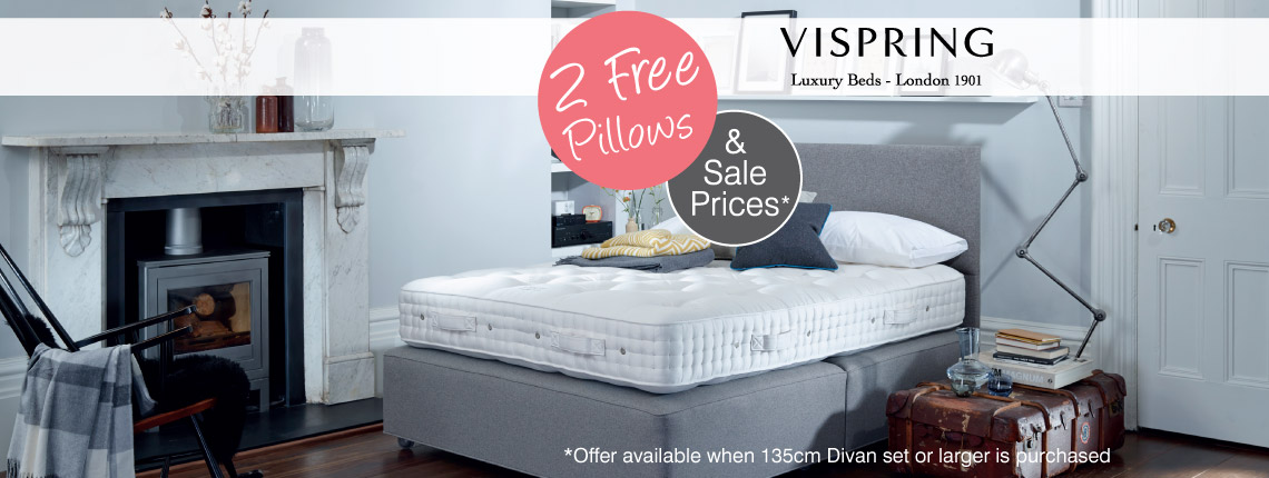 2 Free Pillows